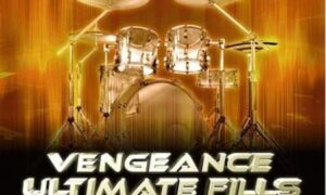 Vengeance Ultimate Fills Vol.2